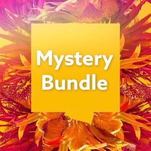 Mystery Bundle- Who doesn't like surprises?